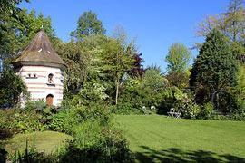 The Jardin des Lianes