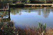 Brenne Regional Natural Park