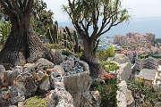 The Jardin Exotique de Monaco
