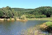 Livradois-Forez Regional Park