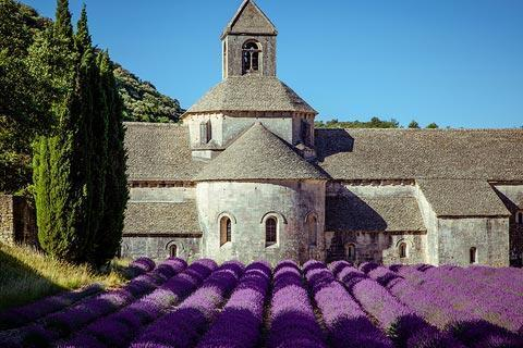 Photo of Abbey of Senanque in Luberon (Provence region)