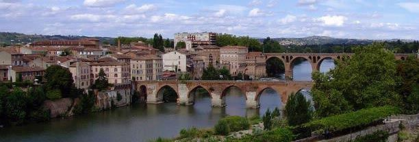 Albi bridges