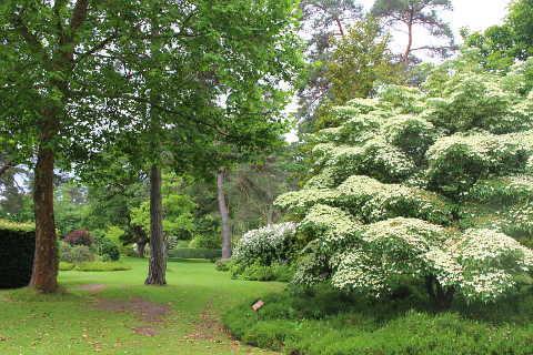 Photo of Arboretum des Grandes Bruyeres in Loiret