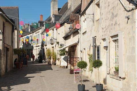 Photo of Artannes-sur-Indre in Indre-et-Loire