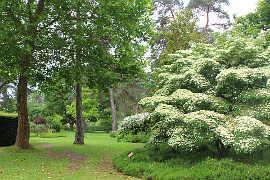 photo de Arboretum des Grandes Bruyeres