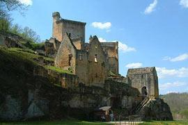 photo de Château de Commarque