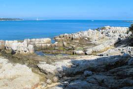 photo of Ile Saint-Honorat