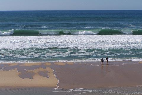 Photo of Biscarrosse in Landes