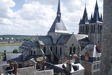 View from Blois castle