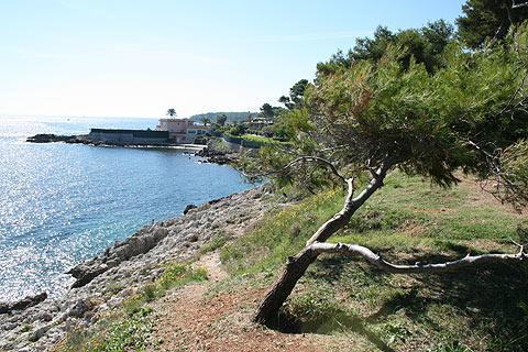 Photo of Cap d'Antibes in Cote d'Azur (Provence region)