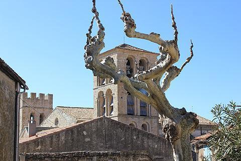 Photo of La Liviniere in Herault