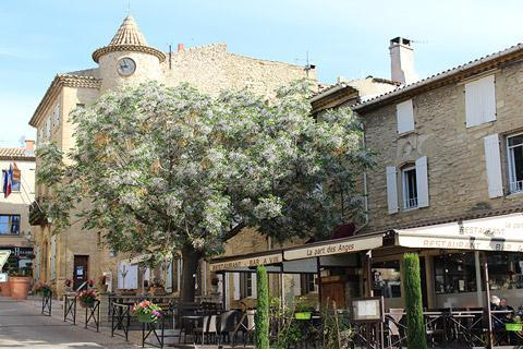 Photo of Chateauneuf-du-Pape (Provence region)