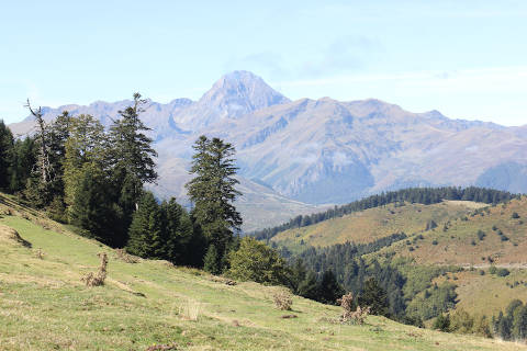 Photo de Escots du département de Hautes-Pyrenees