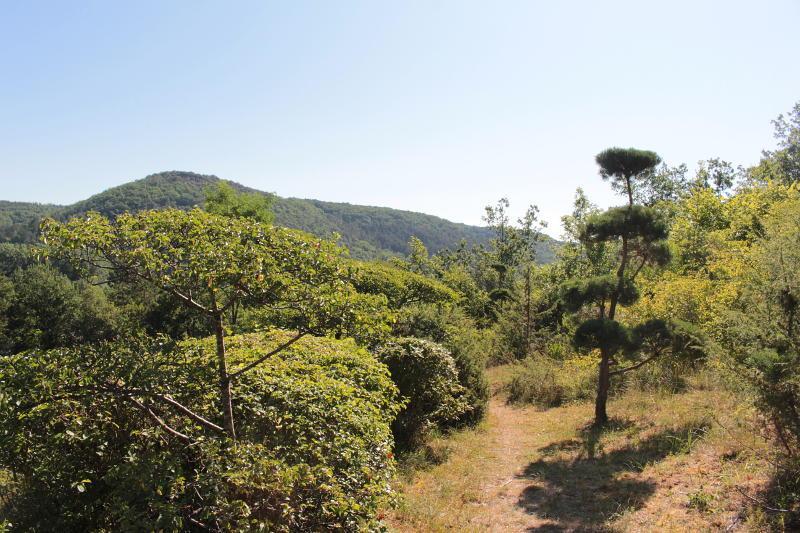 Photo of The Jardin de l'Albarede