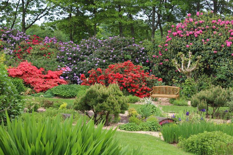 Photo of Les Jardins des Renaudies