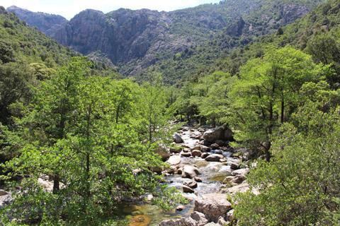 Photo of Gorges de Spelunca (Corsica region)