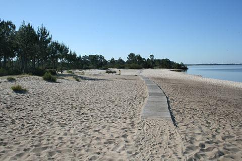 Beach at Hourtins