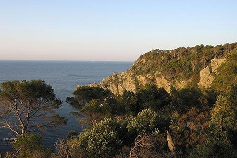 Photo of Iles d'Hyeres in Var