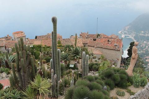 Photo de Le Jardin Exotique d'Eze