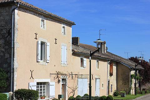 Photo de Le-Pin de Tarn-et-Garonne