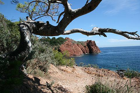 Photo de Massif de l'Esterel en Cote d'Azur (Provence region)