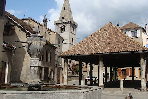 Photo of Montlaur-en-Diois in Drome