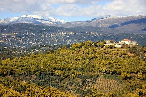 Photo of Auribeau-sur-Siagne in Alpes-Maritimes