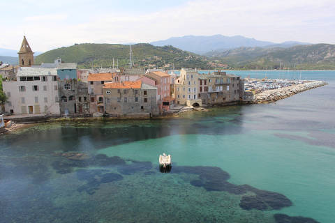 Photo of Olmo in Corsica