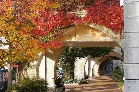 Photo of Saint-Vivien-de-Monsegur in Gironde