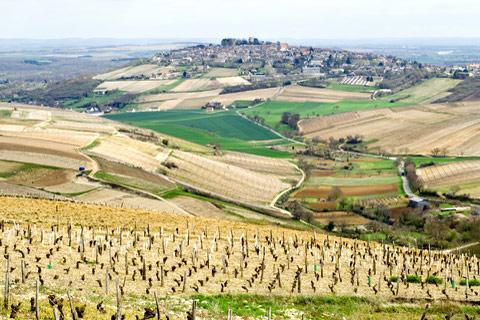Photo de Sancerre (Val du Loire region)