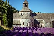 photo of Abbey of Senanque