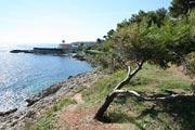 photo of Cap d'Antibes