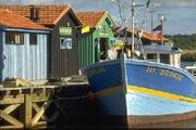 photo of Ile d'Oleron