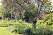 photo of Le Jardin de Liliane