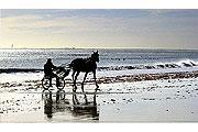 La Faute-sur-Mer