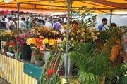 photo of La Rochelle market