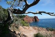 photo de Massif de l'Esterel