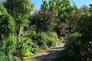 La Promenade Fleurie proche de Mimizan