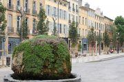 mossy-fountain