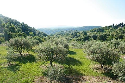 Vue à travers l'Ardèche