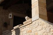 stone-trough-with-cat
