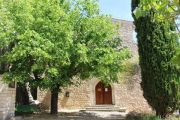 church-and-trees