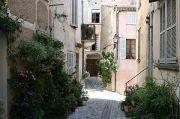 quiet-courtyard