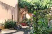 jardin-de-la-sorciere