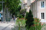 street-garden