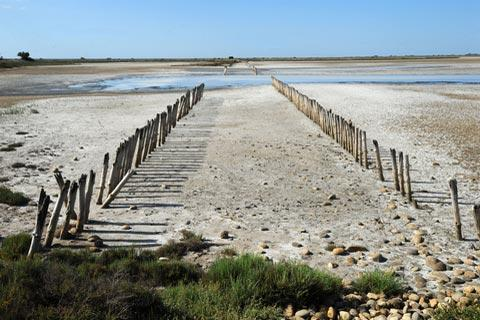 lagoon and beach in the Camargue