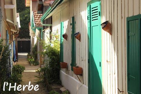 L'Herbe village sur Cap Ferret