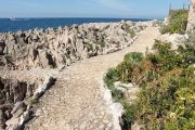 coast-path-5