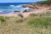 capo-di-feno-beach