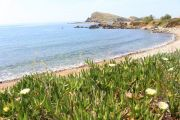 scenery-along-coast